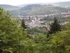 wandern-im-saargau-008
